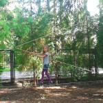 Park linowy w szkole Eureka