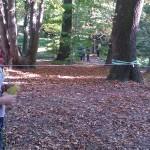 """Uczniowie """"Żmichowskiej"""" opanowali Ogród Botaniczny UW!"""
